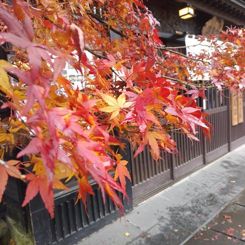 Cパートナーズ営業日記 東北の小京都、角館