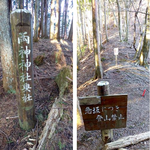 株式会社Cパートナーズ 四阿屋山登山