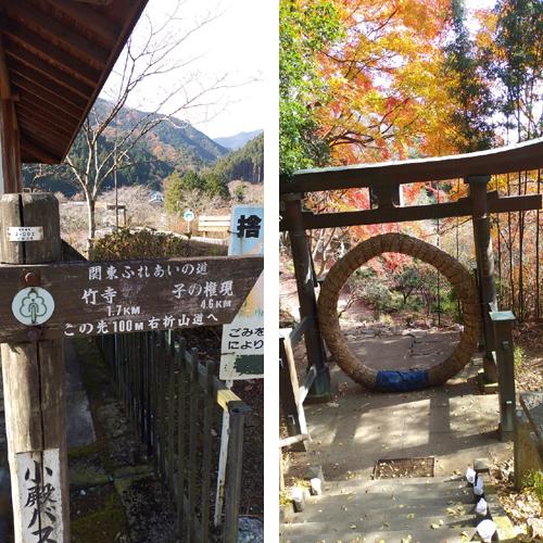 武蔵野の竹寺から子の権現へ